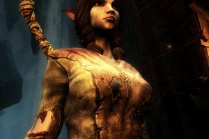 Kingdom of Amalur Reckoning Bild 2
